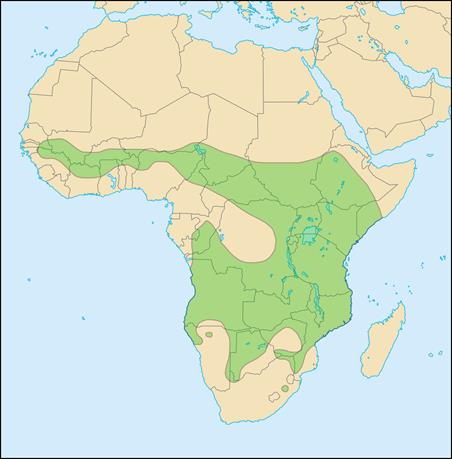 African Lion Population Distribution