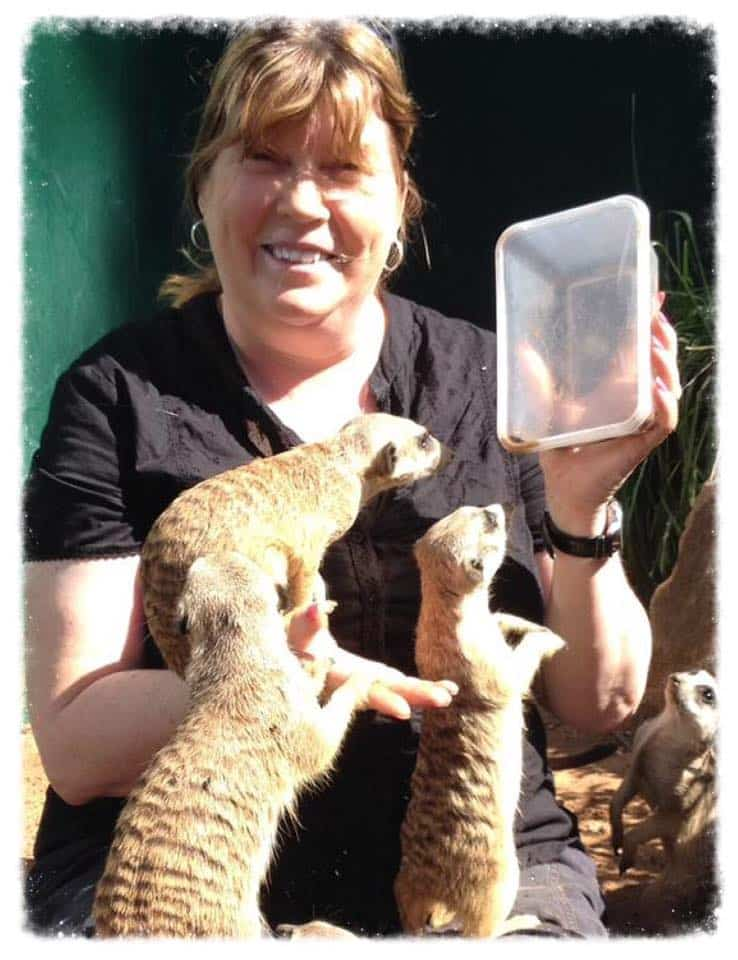 'Really enjoyed my visit with the meerkats yesterday'