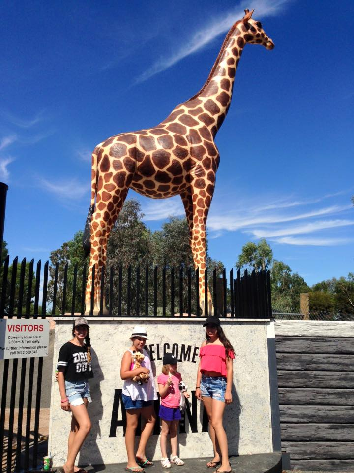'The best zoo we have ever experienced'