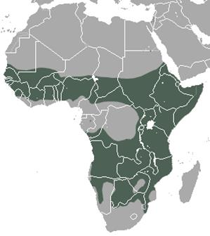 Spotted Hyena Population Distribution Map